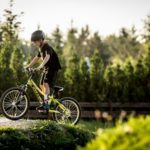 rower kellys wrocław